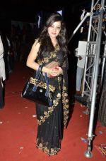 at Gujarati film awards in Tulip Star, Mumbai on 1st March 2014 (41)_5312a21a1d765.JPG