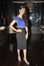 Sunita Gowariker at Neeta Lulla_s 50th birthday bash in Ariola, Mumbai on 4th March 2014 (97)_5316c6c241ee6.JPG
