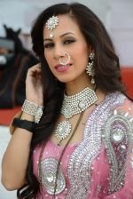 Sunaina Gulzar at Gladrags Mrs India and race in Mumbai on 9th March 2014 (241)_531da08567c3c.JPG