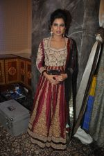 Shreya Ghoshal_s new alnum launch in Sea Princess, Mumbai on 11th March 2014 (143)_532000a557c5a.JPG