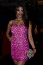 Nicole Faria on Day 1 at LFW 2014 in Grand Hyatt, Mumbai on 12th March 2014 (13)_532182d386db7.JPG