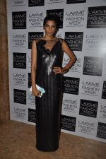 Anushka Manchanda on Day 2 at LFW 2014 in Grand Hyatt, Mumbai on 13th March 2014(189)_5322a058e7099.JPG