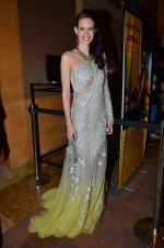 Kalki Koechlin on Day 2 at LFW 2014 in Grand Hyatt, Mumbai on 13th March 2014 (3)_5322a09f7283e.JPG