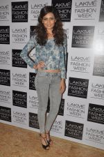 Karishma Tanna at Love From India Show at LFW 2014 Day 2 in Grand Hyatt, Mumbai on 13th March 2014 (55)_532268f00bc95.JPG