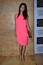 Nethra Raghuraman on Day 2 at LFW 2014 in Grand Hyatt, Mumbai on 13th March 2014 (47)_5322a1981f296.JPG
