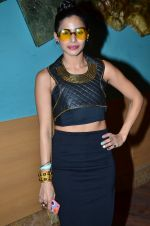 Sonia Mehra on Day 3 at LFW 2014 in Grand Hyatt, Mumbai on 14th March 2014(252)_53243bbb1c0fc.JPG