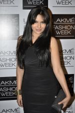 Mrinalini Sharma on Day 4 at LFW 2014 in Grand Hyatt, Mumbai on 15th March 2014 (211)_53265ce33493c.JPG