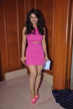 Shalini Sahuta at Saath Nibhana Sathiya 100 episodes bash in J W Marriott, Mumbai on 20th March 2014 (81)_532c286a901ac.JPG