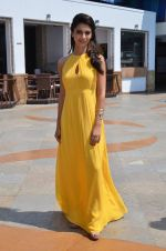 Ayesha Khanna at the Promotion of Dishkiyaoon in Sun N Sand on 25th March 2014 (68)_5332c4fde431f.JPG