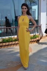 Ayesha Khanna at the Promotion of Dishkiyaoon in Sun N Sand on 25th March 2014 (76)_5332c502733f3.JPG