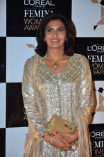 at Loreal Paris Women Awards in Mumbai on 27th March 2014 (2)_5335b6cd3ebad.JPG
