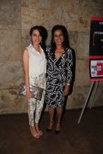Deeya Singh at the premiere of films by starkids in Lightbox Theatre, Mumbai on 13th April 2014 (9)_534bc923d229f.JPG