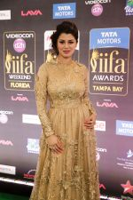 Kainaat Arora at IIFA ROCKS Green Carpet in Tampa Convention Center on 24th April 2014 (2)_535c0162afead.jpg