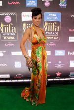 at IIFA ROCKS Green Carpet in Tampa Convention Center on 24th April 2014 (35)_535c008054e59.jpg