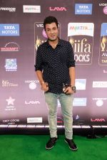 at IIFA ROCKS Green Carpet in Tampa Convention Center on 24th April 2014 (51)_535c0087b0a6f.jpg
