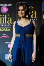 Freida Pinto at IIFA Magic of the Movies Green Carpet in Mid Florida Credit Union Amphitheater on 25th April 2014 (19)_535cb40911792.jpg