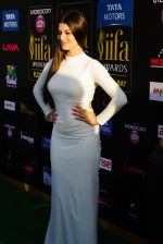 Kainaat Arora at IIFA Magic of the Movies Green Carpet in Mid Florida Credit Union Amphitheater on 25th April 2014 (1)_535cb3f20cd2f.jpg