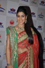 Sakshi Tanwar at Pidilite CPAA Show in NSCI, Mumbai on 11th May 2014,1 (180)_5370c00c346de.JPG
