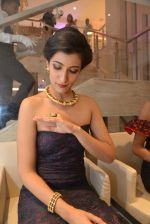 Lisa Mangaldas at Zoya store launch hosted by Nisha Jamwal in Mumbai on 15th May 2014 (104)_53757aacbce70.JPG