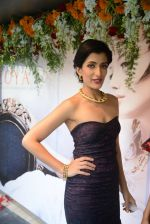 Lisa Mangaldas at Zoya store launch hosted by Nisha Jamwal in Mumbai on 15th May 2014 (129)_53757ab9a2a32.JPG