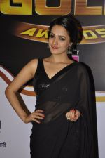 Anita Hassanandani at Gold Awards red carpet in Filmistan, Mumbai on 17th May 2014 (402)_5378a185eee87.JPG