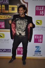 Chetan Hansraj at Gold Awards red carpet in Filmistan, Mumbai on 17th May 2014 (381)_5378a1b564724.JPG