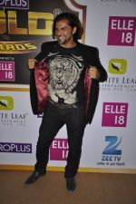 Chetan Hansraj at Gold Awards red carpet in Filmistan, Mumbai on 17th May 2014 (385)_5378a1b843493.JPG