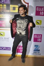 Chetan Hansraj at Gold Awards red carpet in Filmistan, Mumbai on 17th May 2014 (386)_5378a1b8d0322.JPG