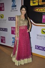 Dimple Jhangiani at Gold Awards red carpet in Filmistan, Mumbai on 17th May 2014 (443)_5378a1f7a8307.JPG