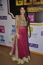 Dimple Jhangiani at Gold Awards red carpet in Filmistan, Mumbai on 17th May 2014 (444)_5378a1f838e15.JPG