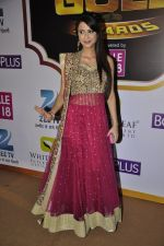 Dimple Jhangiani at Gold Awards red carpet in Filmistan, Mumbai on 17th May 2014 (445)_5378a1f8bc797.JPG