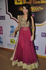Dimple Jhangiani at Gold Awards red carpet in Filmistan, Mumbai on 17th May 2014 (446)_5378a1f93e9b5.JPG