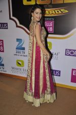 Dimple Jhangiani at Gold Awards red carpet in Filmistan, Mumbai on 17th May 2014 (447)_5378a1f9b83b9.JPG