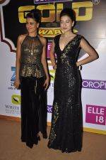 Gauhar Khan, Nigaar Khan at Gold Awards red carpet in Filmistan, Mumbai on 17th May 2014 (330)_5378a41b9e512.JPG