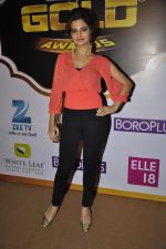 Monica Bedi at Gold Awards red carpet in Filmistan, Mumbai on 17th May 2014 (348)_5378a56be3e64.JPG