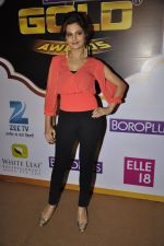 Monica Bedi at Gold Awards red carpet in Filmistan, Mumbai on 17th May 2014 (349)_5378a56c65305.JPG