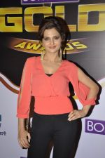 Monica Bedi at Gold Awards red carpet in Filmistan, Mumbai on 17th May 2014 (350)_5378a56cdede9.JPG