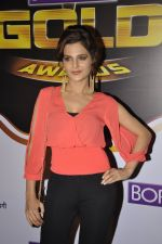 Monica Bedi at Gold Awards red carpet in Filmistan, Mumbai on 17th May 2014 (351)_5378a56d61fef.JPG