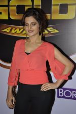 Monica Bedi at Gold Awards red carpet in Filmistan, Mumbai on 17th May 2014 (352)_5378a56ddabb5.JPG