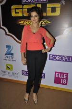 Monica Bedi at Gold Awards red carpet in Filmistan, Mumbai on 17th May 2014 (347)_5378a56b54043.JPG