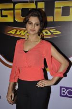 Monica Bedi at Gold Awards red carpet in Filmistan, Mumbai on 17th May 2014 (353)_5378a56e67bff.JPG