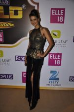 Nigaar Khan at Gold Awards red carpet in Filmistan, Mumbai on 17th May 2014 (338)_5378a41e2cf4d.JPG