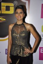 Nigaar Khan at Gold Awards red carpet in Filmistan, Mumbai on 17th May 2014 (339)_5378a4279562e.JPG