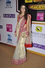 Rucha Gujrathi at Gold Awards red carpet in Filmistan, Mumbai on 17th May 2014 (308)_5378a58880e6a.JPG