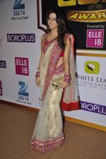 Rucha Gujrathi at Gold Awards red carpet in Filmistan, Mumbai on 17th May 2014 (311)_5378a58a09946.JPG