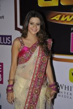 Rucha Gujrathi at Gold Awards red carpet in Filmistan, Mumbai on 17th May 2014 (307)_5378a58804537.JPG