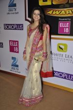 Rucha Gujrathi at Gold Awards red carpet in Filmistan, Mumbai on 17th May 2014 (310)_5378a58985b2d.JPG