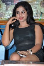 Jump Jilani movie trailer launch event on 19th May 2014 (97)_537b43c7dac6b.JPG