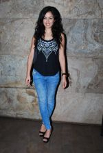 Maryam Zakaria at X Men screening hosted by Abhishek Kapoor in Lightbox, Mumbai on 19th May 2014 (18)_537af597392f1.JPG