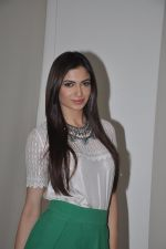 Simran Kaur Mundi at Kuku Mathur Ki Jhand Ho Gayi film promotions in Yashraj, Mumbai on 19th May 2014 (89)_537af30b359e1.JPG